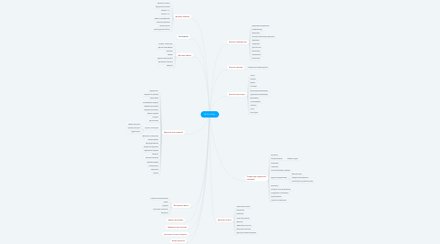 Mind Map: Bu-bu shop