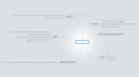 Mind Map: Cirulatory System.