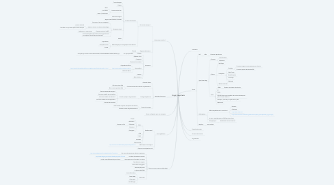 Mind Map: Projet CoopCarto