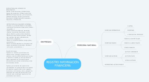Mind Map: REGISTRO INFORMACION FINANCIERA