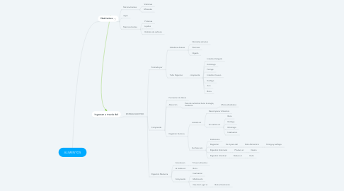 Mind Map: ALIMENTOS