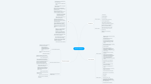Mind Map: Красный Циркуль