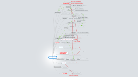 Mind Map: A tantervi háló
