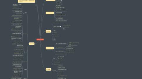 Mind Map: Разработка Франшизы
