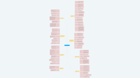 Mind Map: Learned lessons Essential