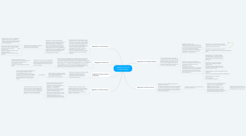 Mind Map: KIDNEYS ROLE IN HOMEOSTASIS