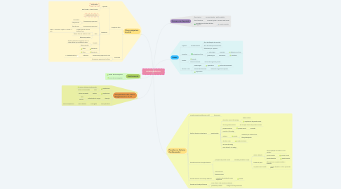 Mind Map: HEMODINÂMICA