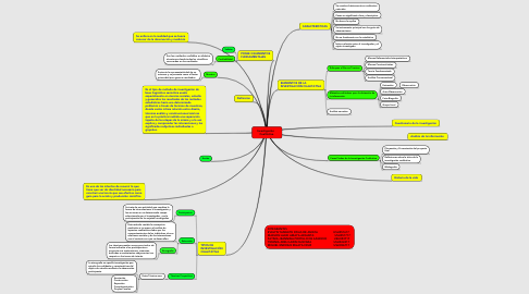 Mind Map: Investigación    Cualitativa.