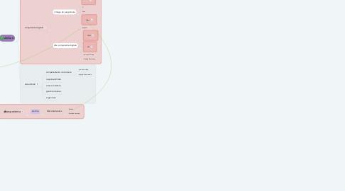Mind Map: RALUCA MACSIM