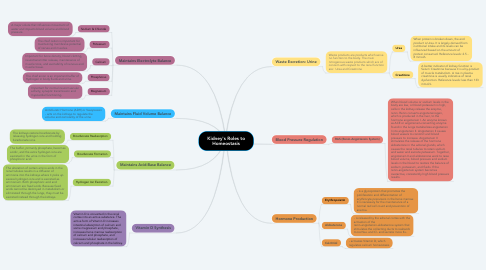 Mind Map: Kidney's Roles to Homeostasis