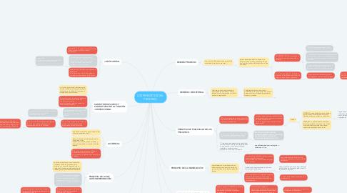 Mind Map: LOS PRINCIPIOS DEL  PROCESO.