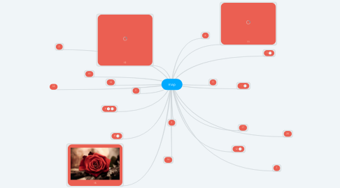 Mind Map: map