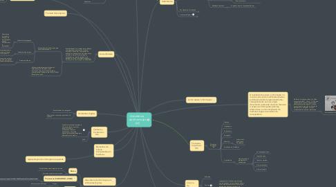 Mind Map: Arquitetura   da Informação (AI)