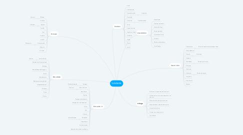 Mind Map: Solidarité
