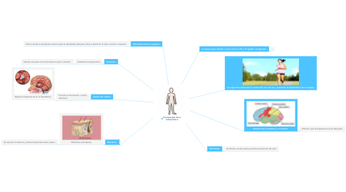 Mind Map: Homeostasis de la  temperatura.