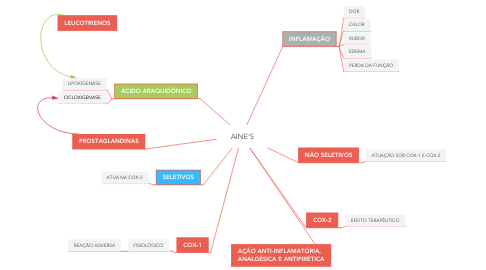 Mind Map: AINE'S