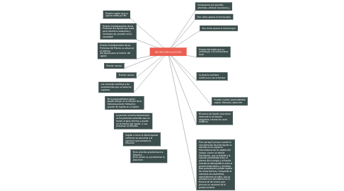 Mind Map: MICROCIRCULACIÓN