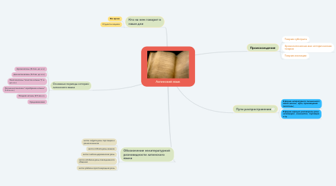 Mind Map: Латинский язык