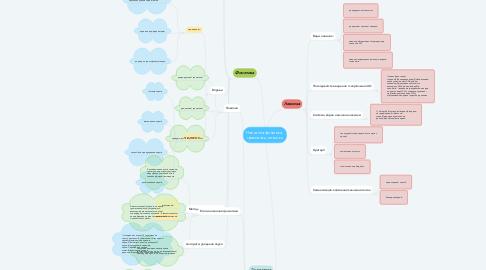 Mind Map: Навчання фонетики, граматики, лексики
