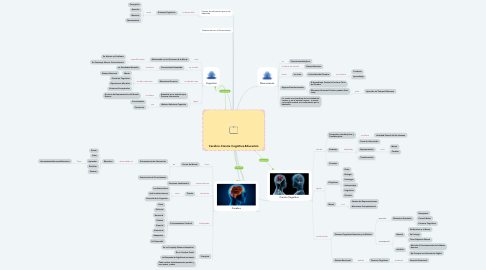 Mind Map: Cerebro-Ciencia Cognitiva-Educación