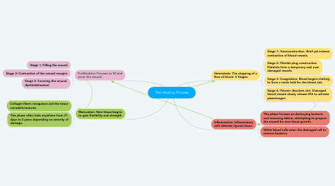 Mind Map: The Healing Process