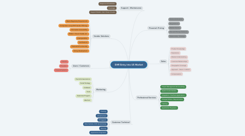 Mind Map: EHR Entry into US Market