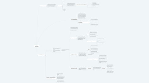 Mind Map: CARTILLA DISCIPLINARIA