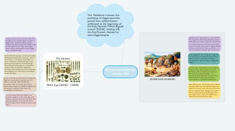 Mind Map: INS presentation by: Aiesha Y6B