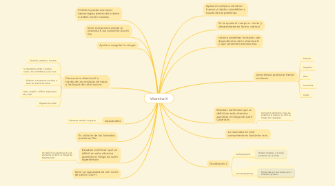 Mind Map: Vitamina K