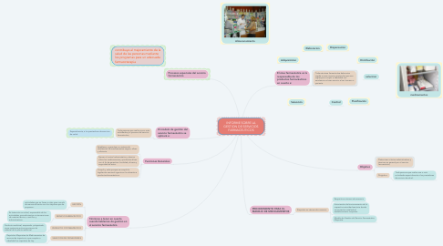 Mind Map: INFORME SOBRE LA GESTION DE SERVICIOS FARMACEUTICOS