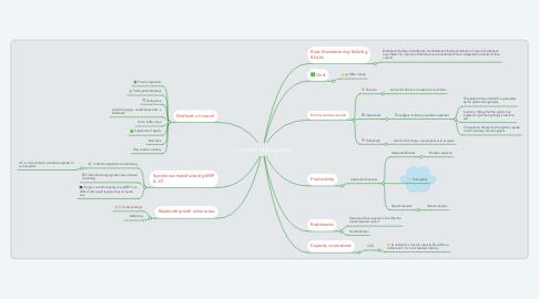 Mind Map: Constraint Management