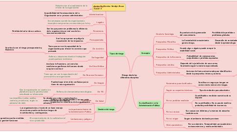 Mind Map: Riesgo desde las diferentes disciplina