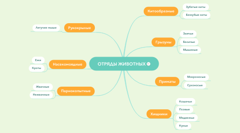 Mind Map: ОТРЯДЫ ЖИВОТНЫХ