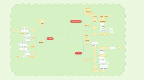 Mind Map: Niveles del conocimiento