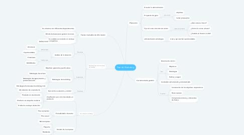 Mind Map: Plan de Marketing