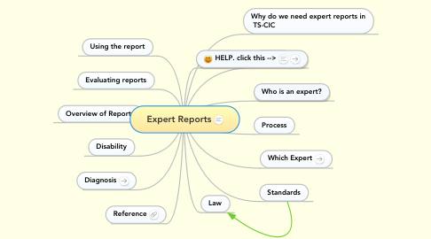 Mind Map: Expert Reports