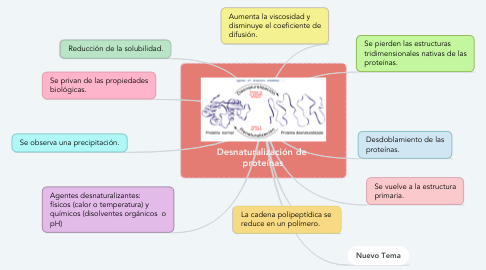 Mind Map: Desnaturalización de  proteínas