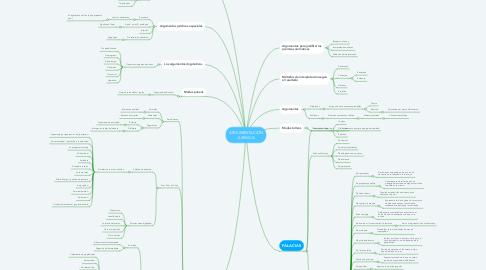 Mind Map: ARGUMENTACIÓN JURÍDICA