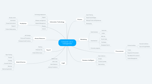 Mind Map: Computer use in management