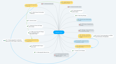 Mind Map: IdeaLab 2018