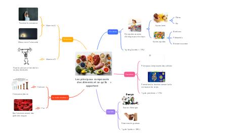 Mind Map: Les principaux composants des aliments et ce qu'ils apportent