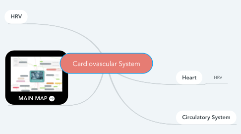 Mind Map: Cardiovascular System