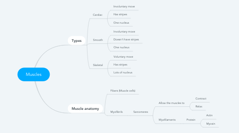 Mind Map: Muscles