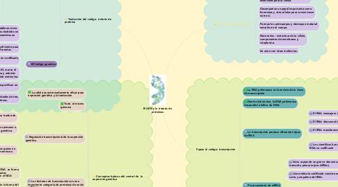 Mind Map: El ARN y la síntesis de  proteínas.