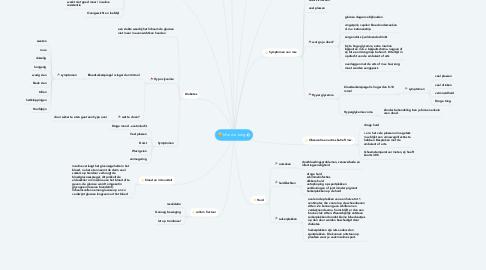 Mind Map: Mw. de Jong