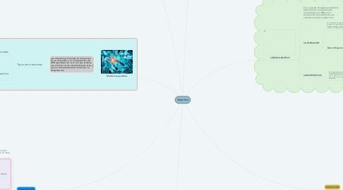 Mind Map: Genetica