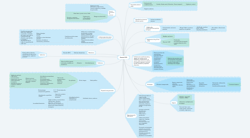 Mind Map: Decreto 3075