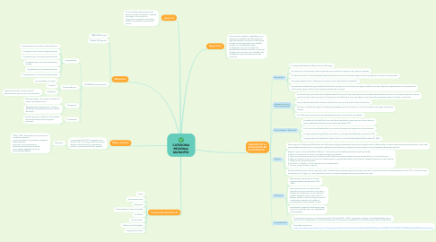 Mind Map: CATEGORIA REGIONAL MUNICIPIO