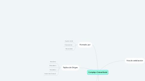 Mind Map: Complejo Craneofacial