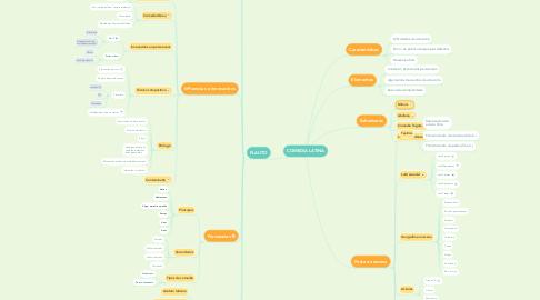 Mind Map: COMEDIA LATINA